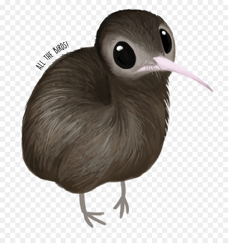 Island bird clipart clip freeuse download Kiwi Bird Clipart clipart - Bird, Feather, Wing, transparent clip art clip freeuse download