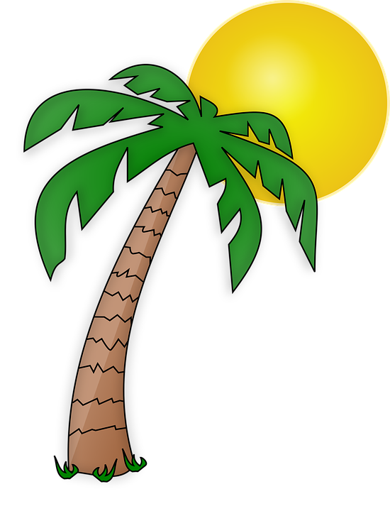 Island clipart transparent background png clip library download Palm, Tree - Free vector graphics on Pixabay clip library download