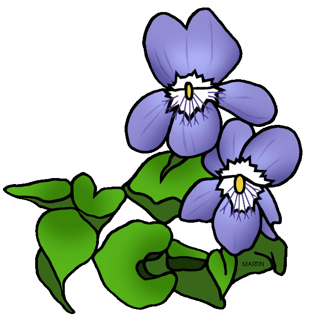 United States Clip Art by Phillip Martin, State Flower of Rhode ... jpg freeuse download