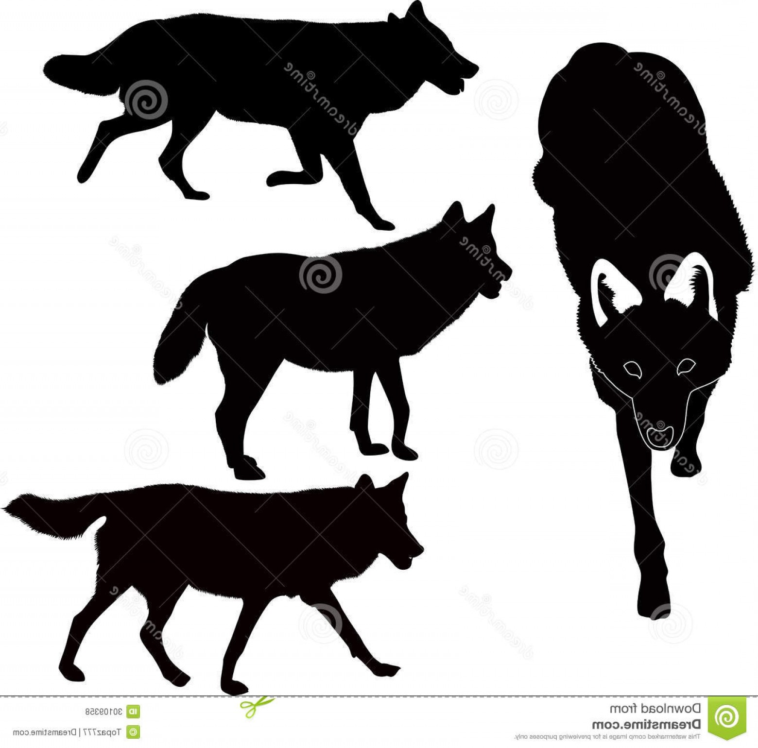 Isolated free stock clipart photos image black and white download Royalty Free Stock Photos Wolves Animals Vector Isolated White ... image black and white download