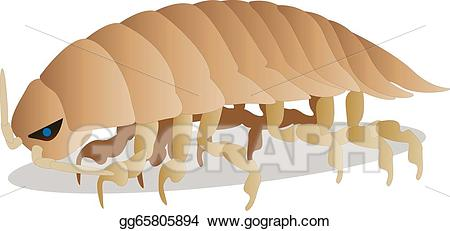 Isopod clipart clipart transparent EPS Vector - Isopod. Stock Clipart Illustration gg65805894 - GoGraph clipart transparent