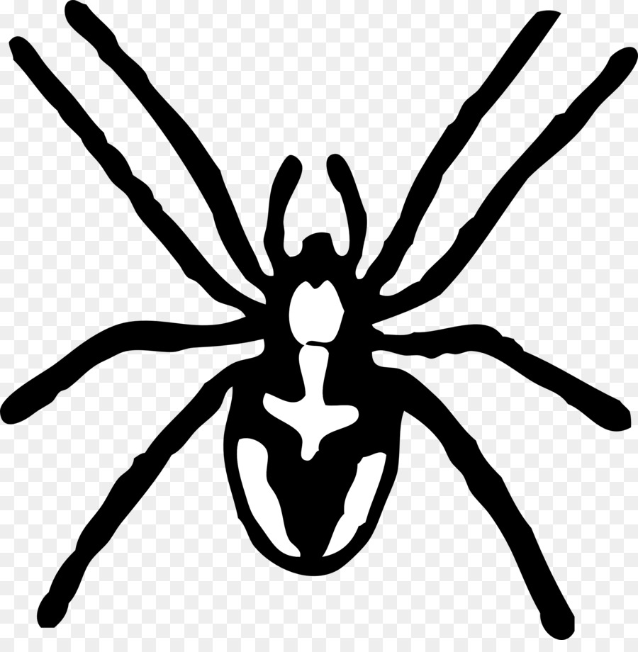 Itsy bitsy spider clipart black and white black and white stock Cartoon Spider png download - 2555*2563 - Free Transparent ... black and white stock