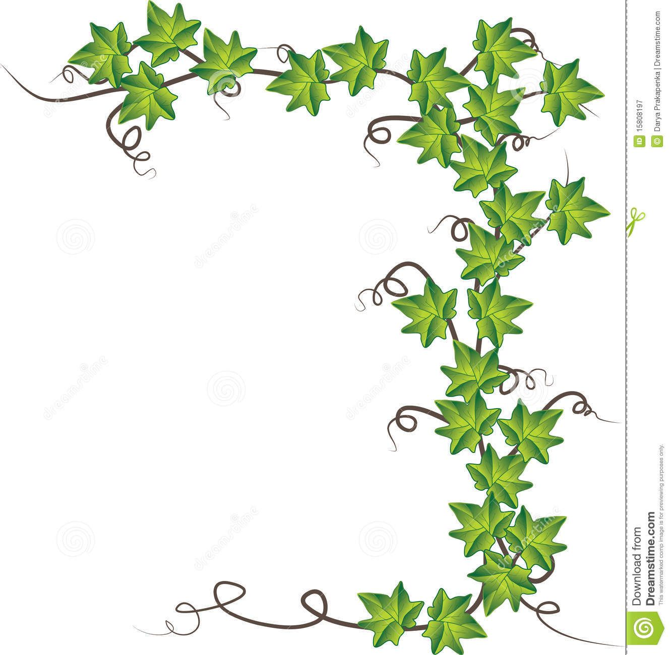 Ivy frame clipart graphic freeuse Pin by Priskal Wijaya on ELEGANT HOMES ✿✿ | Plant vector ... graphic freeuse