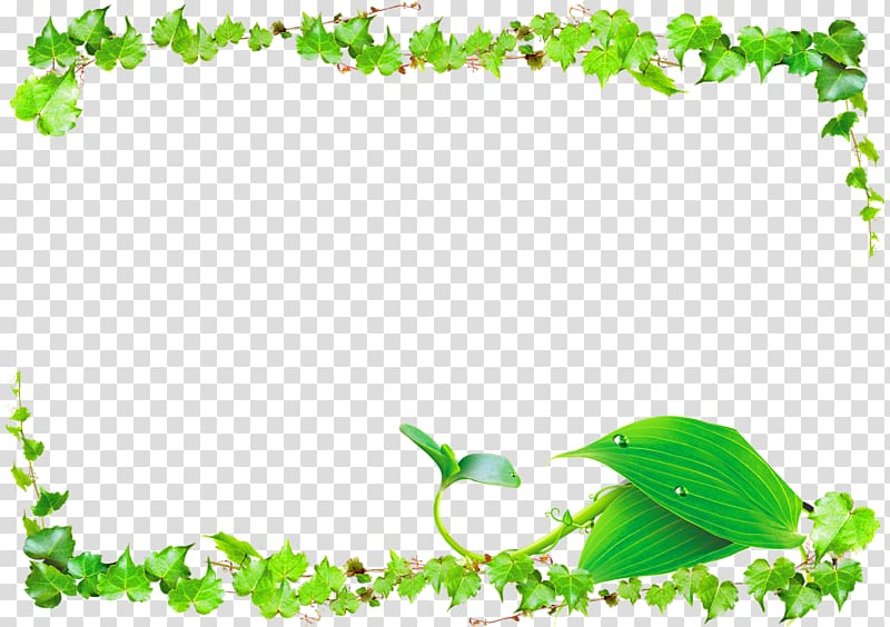 Ivy vine curved frame clipart jpg black and white download Green leaves framed frame illustration, Leaf Green Vine ... jpg black and white download