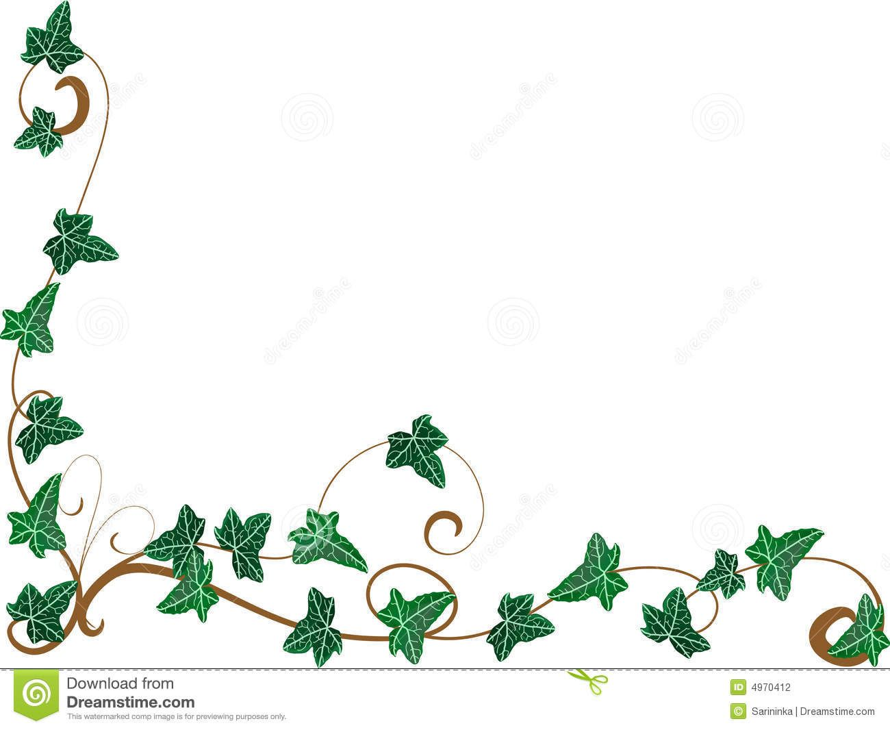 Ivy vine curved frame clipart clipart freeuse vine with maple like leaves drawing - Google zoeken | sketch ... clipart freeuse