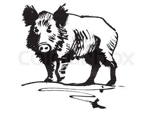 Jabelinas clipart black and white clipart free stock Image result for javelina drawing | west Texas | Moose art ... clipart free stock