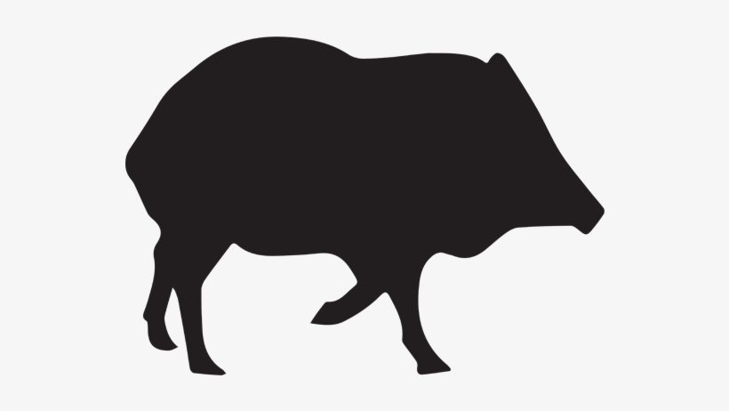 Jabelinas clipart black and white svg free stock 2018 Javelina / Turkey Hunting Rates - Javelina Silhouette ... svg free stock