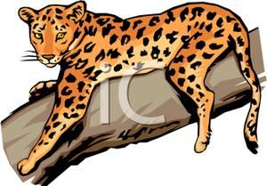 Jaguar clipart banner royalty free Jaguar Clipart Free | Free download best Jaguar Clipart Free ... banner royalty free