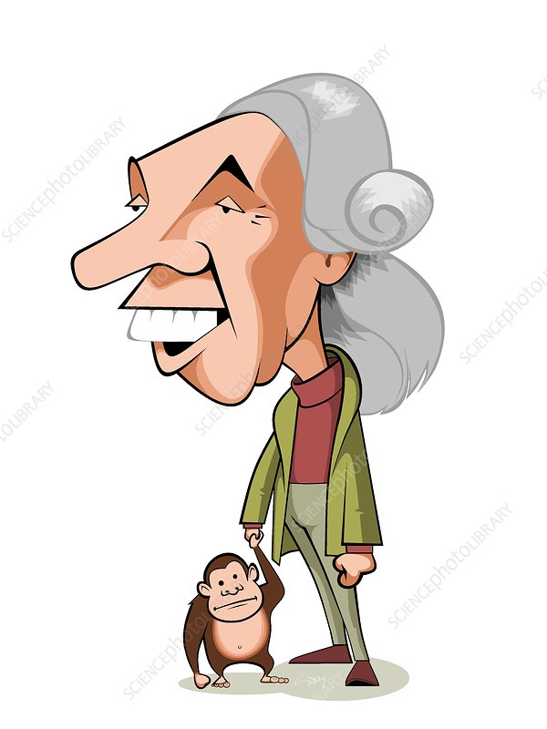 Jane goodall clipart svg library library Jane Goodall, British primatologist - Stock Image - C038/9555 ... svg library library