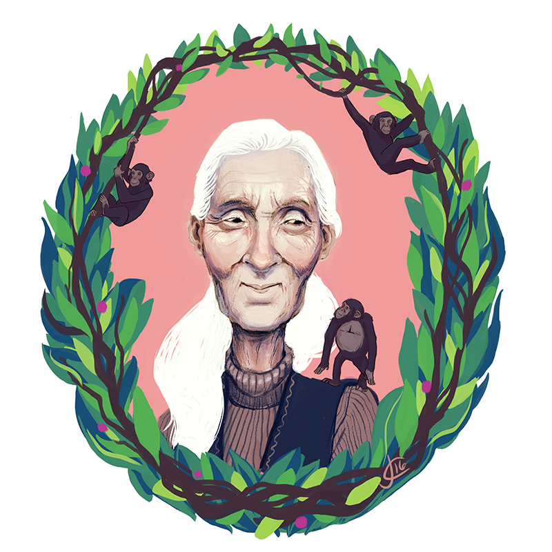 Jane goodall clipart png free Jane Goodall on Behance png free