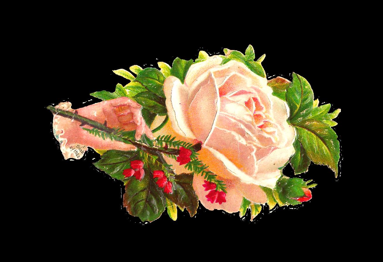 Victorian flower clipart vector free download Clip Art Designs, Vector Clip Art Graghic: January 2013 vector free download