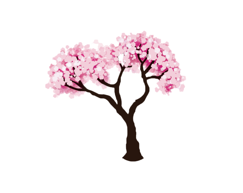 28+ Collection of Cherry Blossom Clipart Png | High quality, free ... image stock