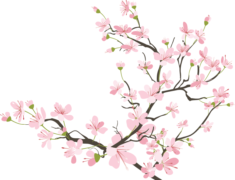 Cherry Blossom Drawing Tumblr at GetDrawings.com | Free for personal ... png royalty free stock