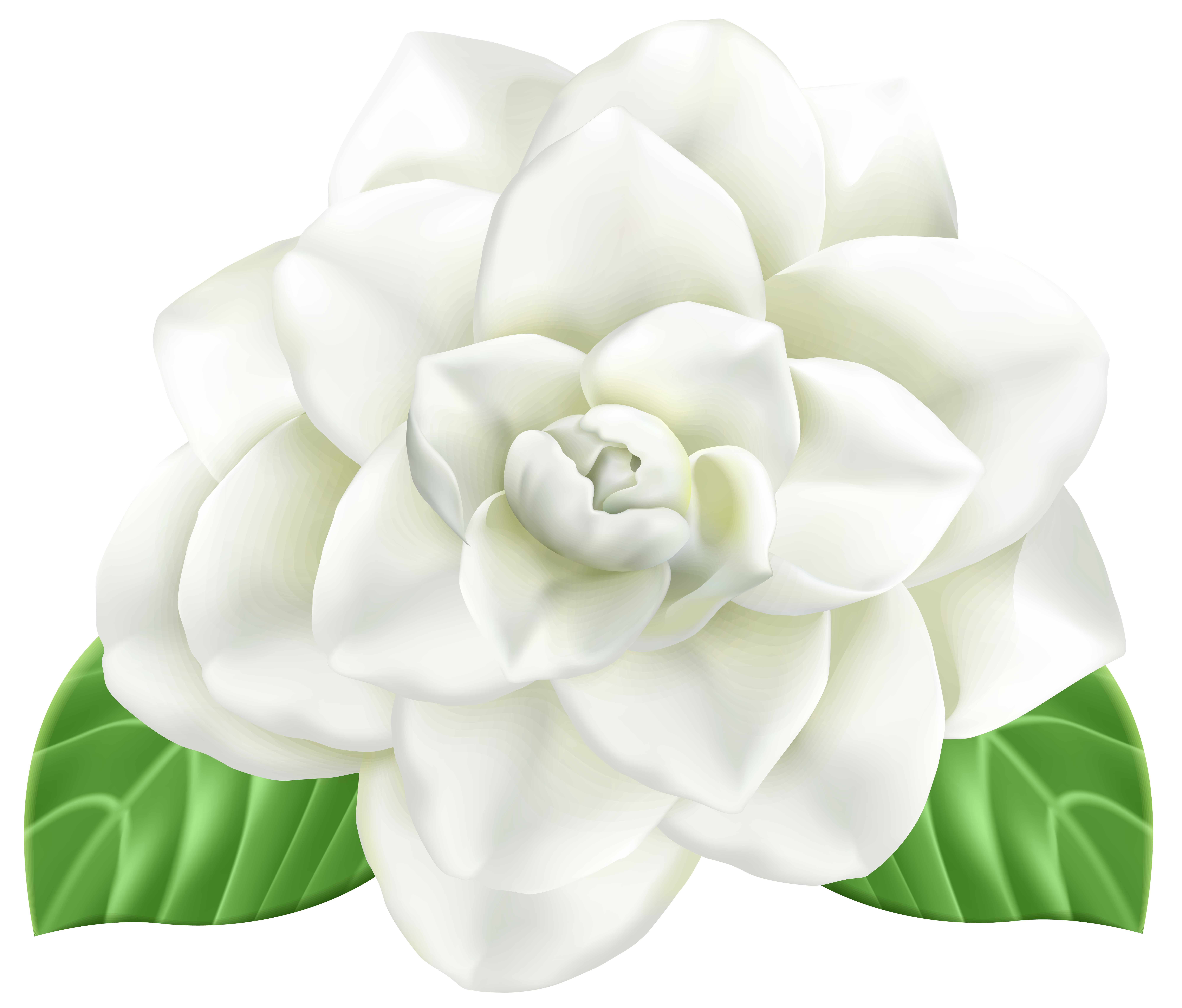 Flower PNG Clip Art Image   Gallery Yopriceville - High-Quality ... banner freeuse