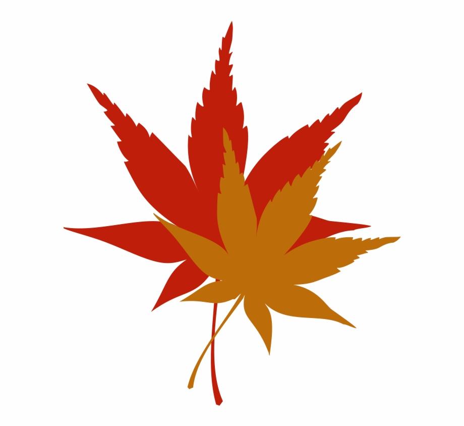 Japanese maple tree clipart clip transparent download Japanese Maple Leaf Free Clip - Japanese Maple Leaf Clipart ... clip transparent download