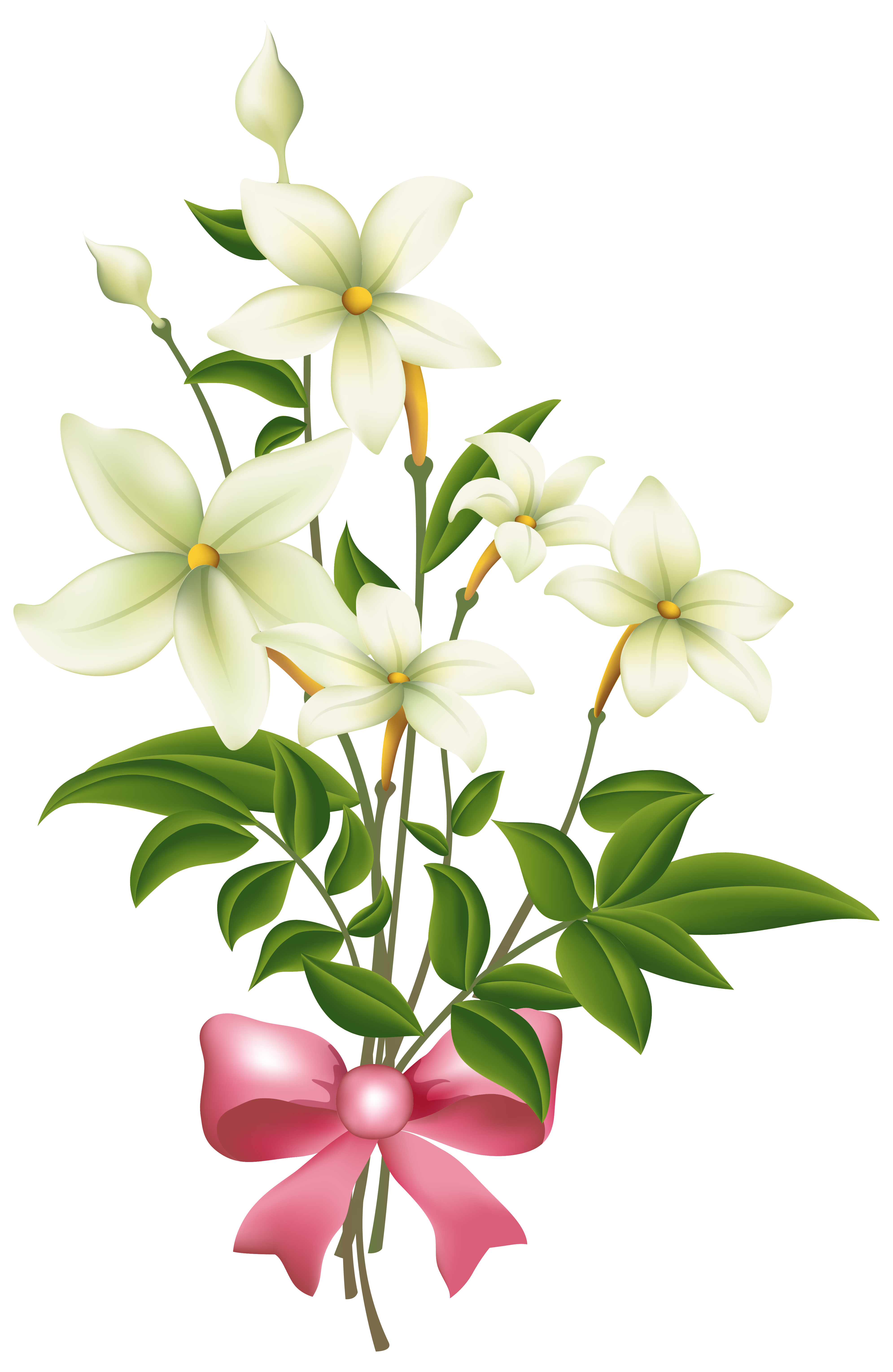 Jasmine flower clipart black and white graphic download White Flowers with Pink Bow PNG Clipart Image | Gallery ... graphic download