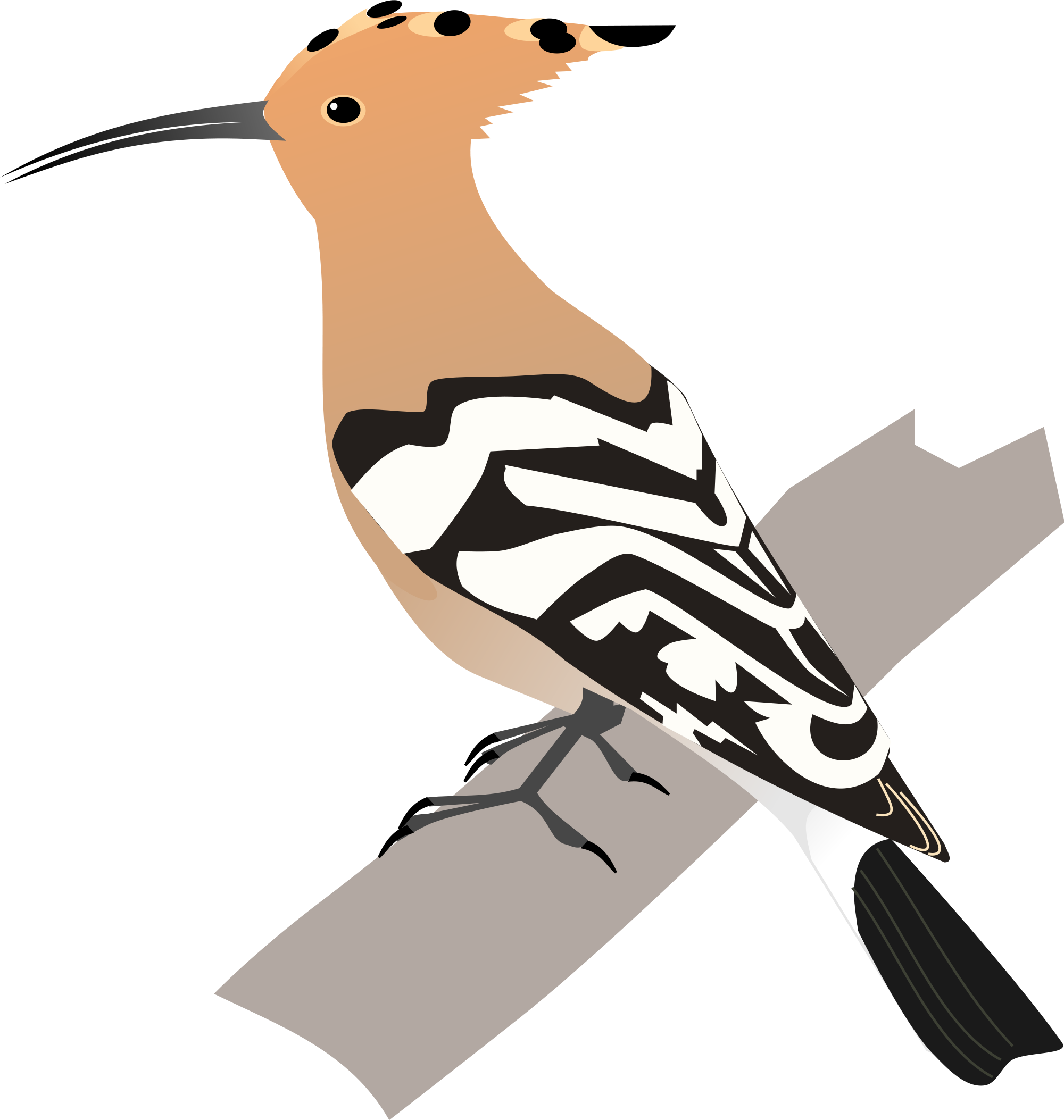 Jawless fish clipart image freeuse download Image - 2000px-Common Hoopoe.svg.png | All Birds Wiki | FANDOM ... image freeuse download
