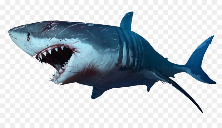 Jaws clipart svg royalty free stock Great White Shark Background png download - 1920*1080 - Free ... svg royalty free stock