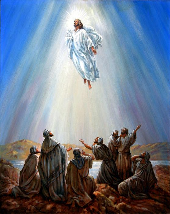 Jesus ascending to heaven clipart image free library 17 Best images about Jesus on Pinterest | The lord, Bon voyage and ... image free library