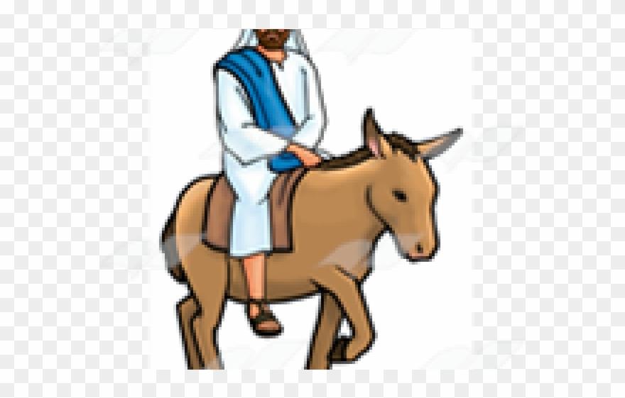 Jesus on donkey clipart jpg freeuse Donkey Clipart Jesus - Mule - Png Download (#1081063) - PinClipart jpg freeuse