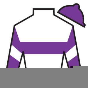 Jockey silks clipart picture free Jockey Silks Clipart | Free Images at Clker.com - vector ... picture free