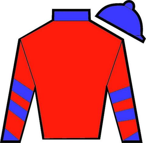 Jockey silks clipart clipart free stock JOCKEY SILKS ECONOMY PRICE clipart free stock