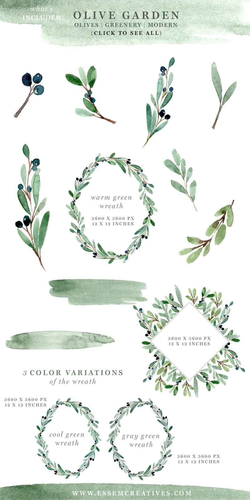 Jpeg clipart of leaf branch use for logos banner royalty free Watercolor Olive Branch Clipart, Olive Leaves Wreath, Leaf Clipart, Laurel banner royalty free