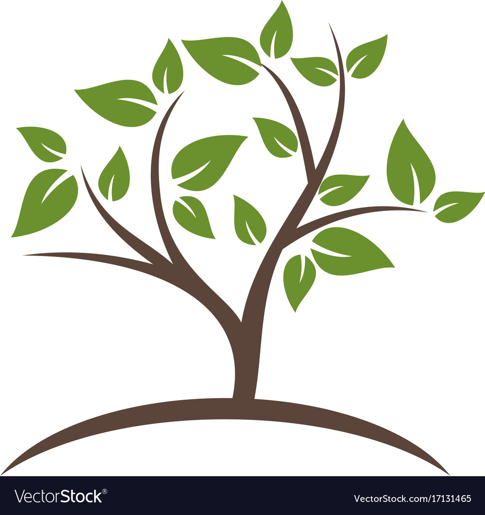 Jpeg clipart of leaf branch use for logos picture library library Plant green tree leaf botany logo picture library library