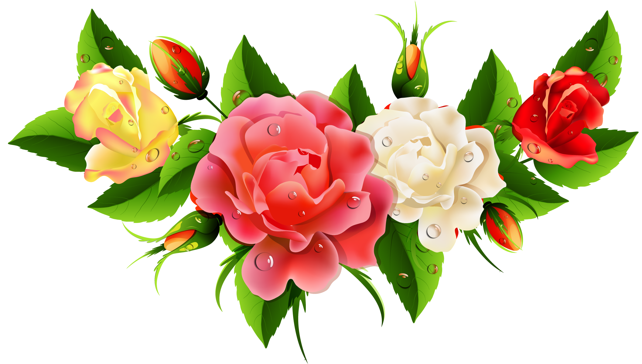 July flower clipart image free download July clipart july flower, July july flower Transparent FREE for ... image free download