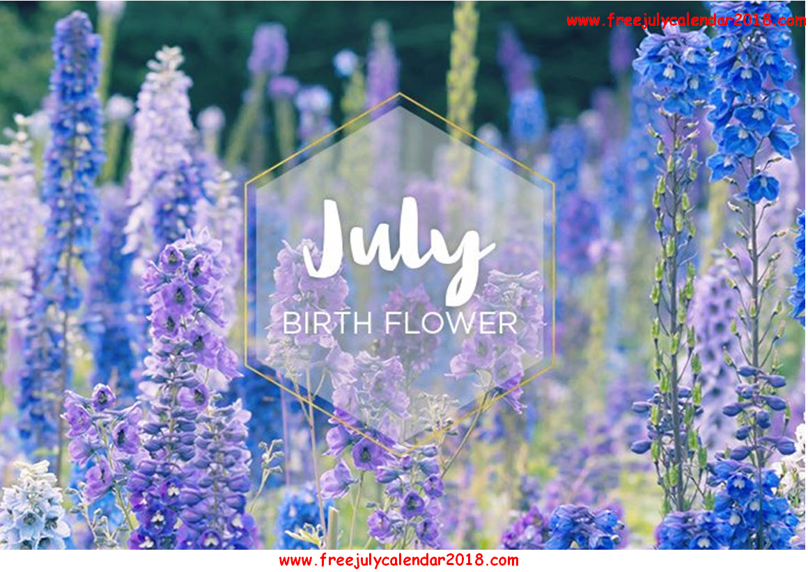 July flower clipart jpg royalty free stock Welcome July Images, Pictures, Quotes, Flowers, Sayings, Photos For FB jpg royalty free stock