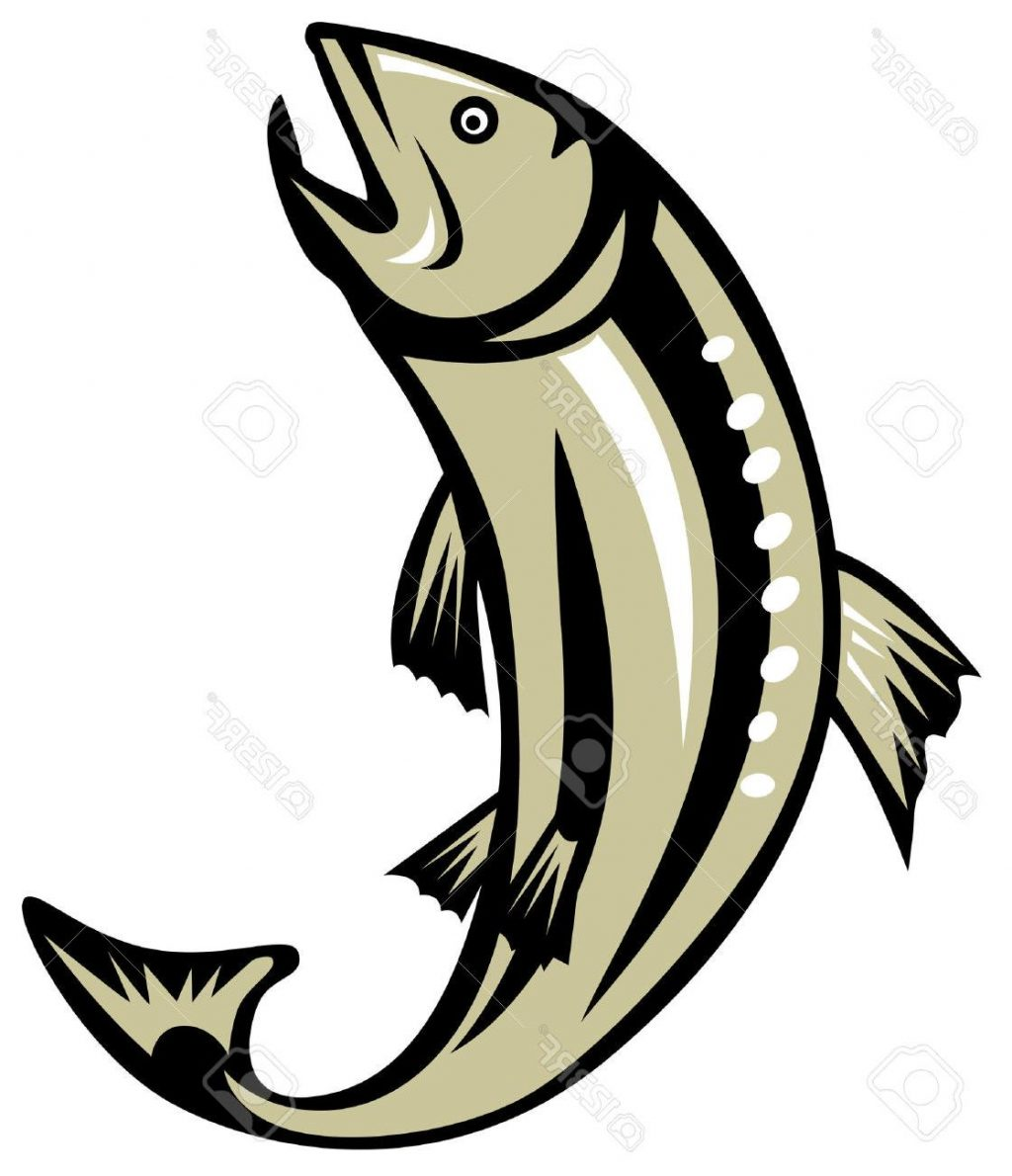 Jumping salmon clipart transparent library Collection of Salmon clipart | Free download best Salmon ... transparent library
