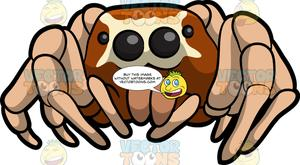 Jumping spider clipart banner library stock A Jumping Spider banner library stock