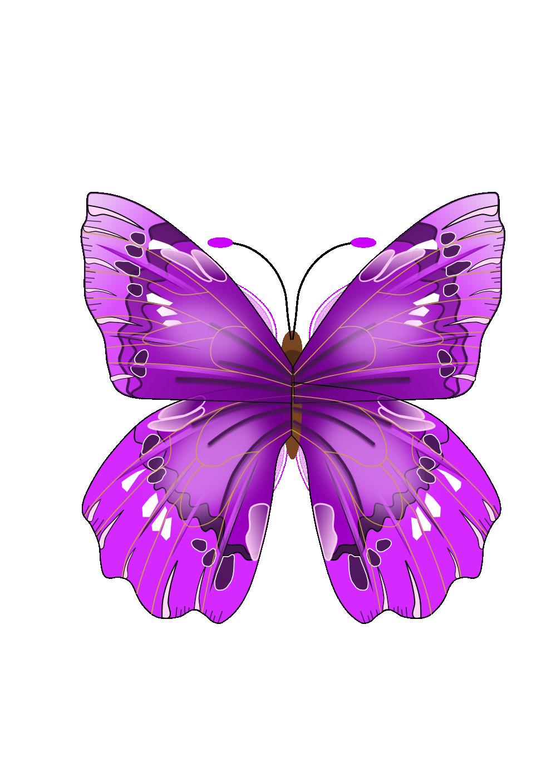June flower clipart image free stock Purple Butterfly - June Flowers Clip Art | Video Description: http ... image free stock