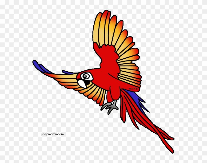 Jungle bird clipart vector royalty free Tree Frog Clipart Rainforest Bird - Clip Art Rainforest ... vector royalty free