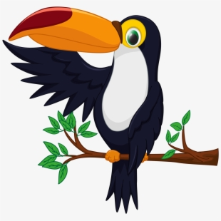 Jungle bird clipart png library Toucan Clipart Rare Bird - Good Morning Rare Bird ... png library
