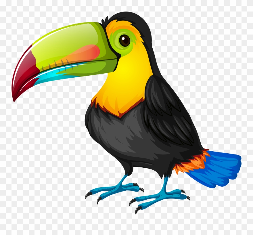 Jungle bird clipart banner black and white library Toucan Clipart 1 Clip Art Bird - Png Download (#192803 ... banner black and white library