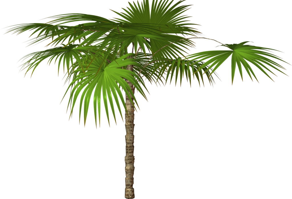 Jungle tree clipart transparent stock Jungle Tree PNG Free Download - peoplepng.com transparent stock