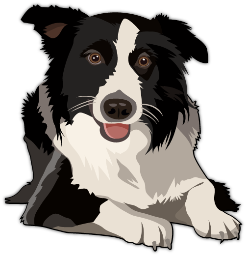Just a boy and his dog clipart boarders image stock Border Collie Vector | Design | Border collie art, Border ... image stock