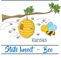 Kansas state clipart svg freeuse Fifty States: Kansas Clipart - Illustrations - Kansas Graphics svg freeuse