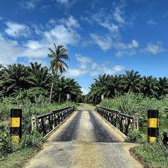 Kavieng hotel clipart vector transparent download 71 Best • M E L A N E S I A // P N G • images in 2018 ... vector transparent download