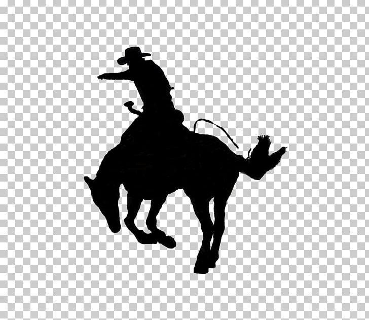Kentucky horse park clipart jpg library download Kentucky Horse Park Calf Roping Lexington Rodeo Team Roping PNG ... jpg library download