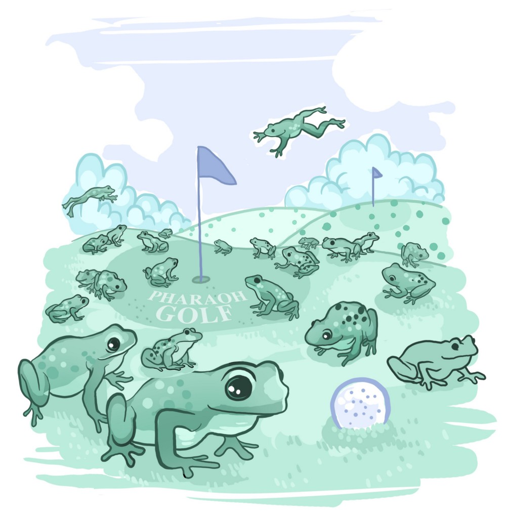 Kid shrugging shoulders clipart thinking about frogs