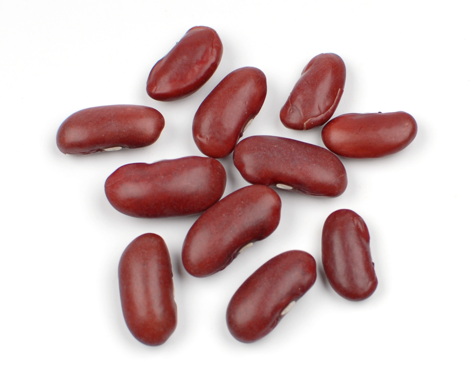 Kidney beans clipart clip royalty free Free Pinto Beans Cliparts, Download Free Clip Art, Free Clip ... clip royalty free