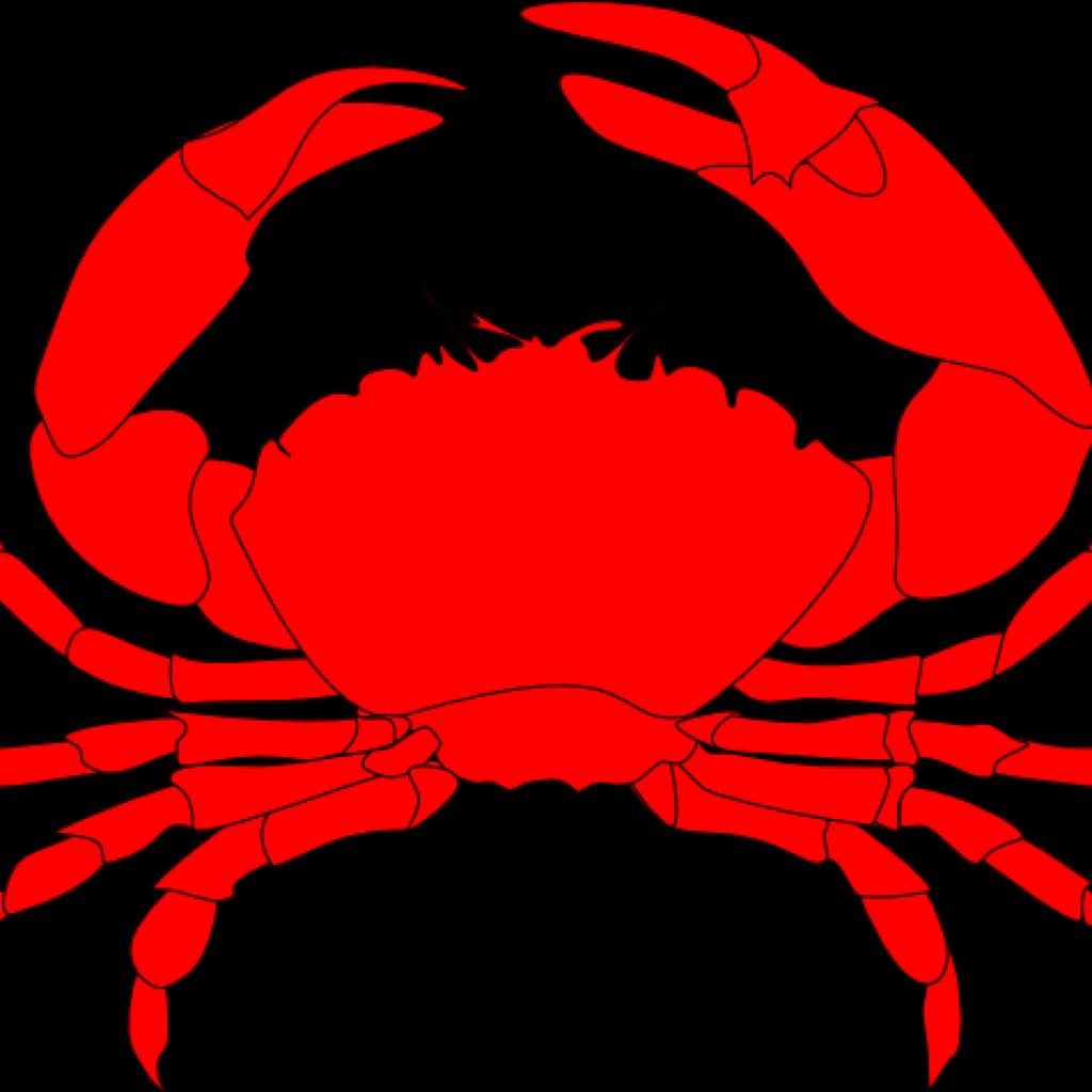 King crab clipart svg free download King crab clipart clipart images gallery for free download | MyReal ... svg free download