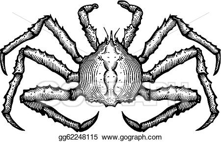 King crab clipart banner download Drawing - A black and white drawing of a king crab. Clipart Drawing ... banner download