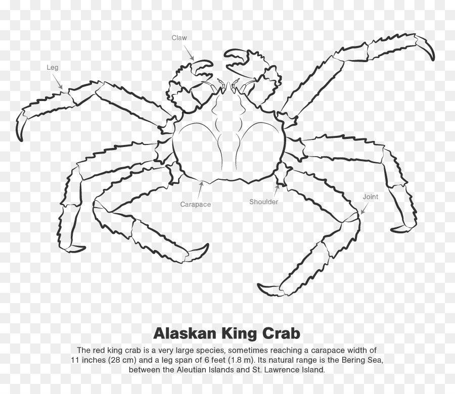 King crab clipart image freeuse download Book Black And White clipart - Crab, Hand, transparent clip art image freeuse download