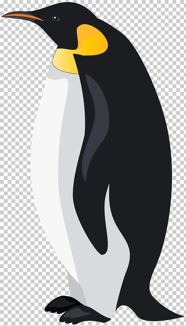 King penguin clipart transparent library King penguin clipart 4 » Clipart Portal transparent library