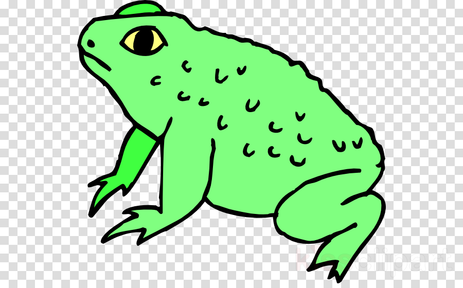 Kiss a lot of frogs free clipart clip art library download Frog, Toad, Amphibians, transparent png image & clipart free download clip art library download