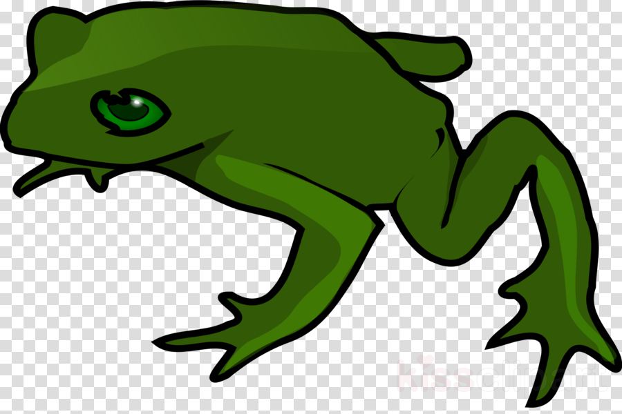 Kiss a lot of frogs free clipart picture library library Frog, Amphibians, Green, transparent png image & clipart free download picture library library
