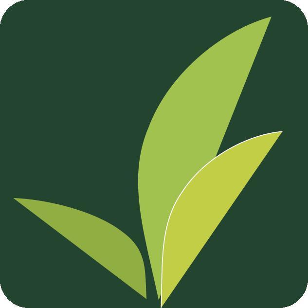 Kiva org clipart graphic royalty free stock Kiva Lending Team: Centro Community   Kiva graphic royalty free stock